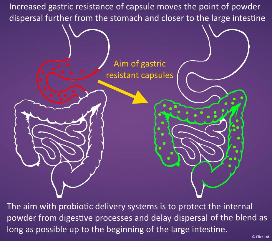 Gastric Resistance